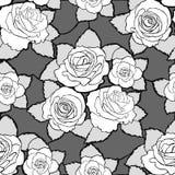 Sömlös blom- modell med vita rosor Royaltyfri Foto