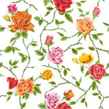 Sömlös blom- rosbakgrund stock illustrationer