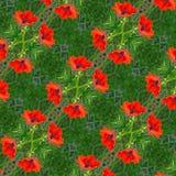 Sömlös blommamodell Fotografering för Bildbyråer
