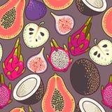 Sömlös exotisk frukt stock illustrationer