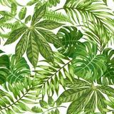 Sömlös exotisk modell med tropiska sidor vektor illustrationer
