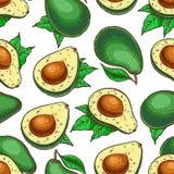 Sömlös färgrik avokado vektor illustrationer