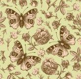Sömlös för Rose Wallpaper Drawing för bakgrund för tappning för blommor för modellpåfågelfjäril realistisk isolerad agrostemma gr royaltyfri bild