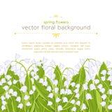 Sömlös gräns med vårblommaliljekonvaljen, blom- baner, bakgrund, vektorillustration Vita knoppskogblommor vektor illustrationer