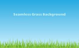 Sömlös gräsbakgrund Arkivfoto