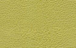Sömlös grön lädertextur royaltyfri fotografi