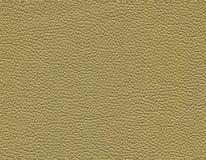 Sömlös grön lädertextur arkivfoton