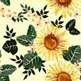 Sömlös grafisk solblomma och vita blommor med gröna sidor på ljus - gul bakgrund, vektorillustration Royaltyfri Bild
