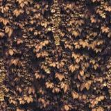 Sömlös guld- purpurfärgad murgrönaväggmodell Arkivbild