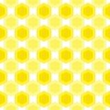 Sömlös honungbikupamodell Arkivbilder