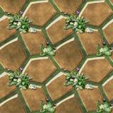 Sömlös lättnadstrottoarmodell av bruna polygonal stenar och tusenskönor Royaltyfri Bild
