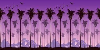 Sömlös landskapmodell med konturer av palmträd på en bakgrund av ljust purpurfärgad solnedgånghimmel och berg royaltyfri illustrationer