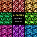 Sömlös leopardmodellsamling, färgrika ändlösa bakgrunder Djurt tryck illustration royaltyfri illustrationer