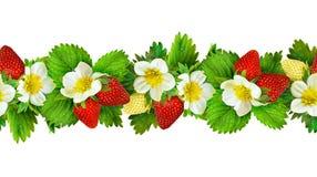 Sömlös linje modell med den jordgubbeblommor, bär och betesmarken Arkivbilder