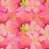 Sömlös modell av att blomstra körsbärsrött japan- och kinesslut Arkivfoton