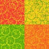 Sömlös modell av citrusfrukt royaltyfri illustrationer