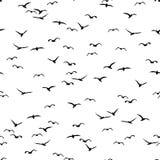 Sömlös modell av en flock av fåglar vektor illustrationer