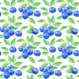 Sömlös modell av ett blåbär Royaltyfri Bild