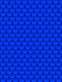 Sömlös modell av färgrik blå fiskvåg Fiskvåg, drakehud, japansk karp, dinosauriehud, finnar, reptil Royaltyfri Fotografi