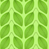 Sömlös modell av gräsplansidor på en grön bakgrund royaltyfri foto