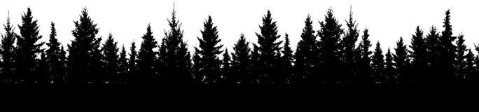 Sömlös modell av granträd, kontur av skogvektorn stock illustrationer