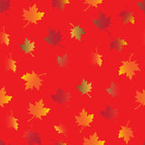 Sömlös modell av hösten Royaltyfri Bild