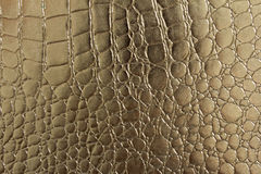 Sömlös modell av krokodil texturerat läder Arkivbilder