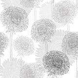 Sömlös modell av maskrosor Hand-dragen blom- bakgrund, M royaltyfri illustrationer