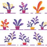 Sömlös modell av olika inlagda Homeplants vektor illustrationer