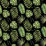 Sömlös modell av tropiska palmblad på svart Royaltyfria Foton