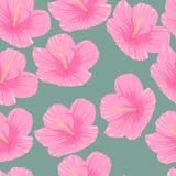 Sömlös modell av tropiska rosa hibiskusblommor royaltyfri illustrationer