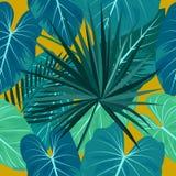 Sömlös modell av tropiska sidor av palmträdet Royaltyfria Bilder