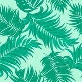 Sömlös modell av tropiska sidor av palmträdet Fotografering för Bildbyråer