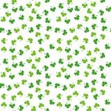 Sömlös modell av växt av släktet Trifoliumsidor Slumpmässig blom- vektorbakgrund inramning grön horisontal fotoväxt Traditionellt stock illustrationer