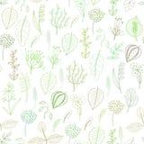 Sömlös modell av växter och örter, blom- bakgrund Royaltyfri Fotografi