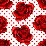 S?ml?s modell, bakgrund med r?da rosor som isoleras p? prickbakgrund royaltyfri illustrationer