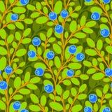 Sömlös modell för blåbär Arkivbilder