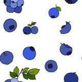 Sömlös modell för blåbär vid handteckningen på vita bakgrunder Royaltyfria Foton