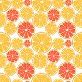 Sömlös modell för citrusfrukt Royaltyfri Fotografi