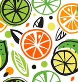 Sömlös modell för dekorativ teckning med citrusfrukt royaltyfri illustrationer