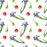 Sömlös modell för för vattenfärgtulpan och iris på vit bakgrund stock illustrationer