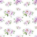 Sömlös modell för härlig vit pion Bukett av blommor Blom- tryck Mark?rteckning royaltyfri illustrationer