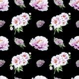 Sömlös modell för härlig vit pion Bukett av blommor var kan olik blom- anv?nd illustrationavsikttextur Mark?rteckning royaltyfria foton