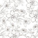 Sömlös modell för körsbärsröd blomning. vektor illustrationer