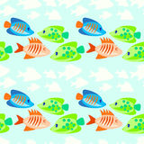 Sömlös modell för kulör fisk Royaltyfri Bild
