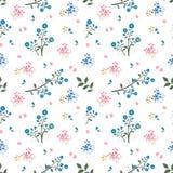 Sömlös modell för lös blomma på blått och rosa lynne royaltyfria bilder