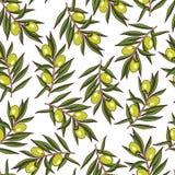 Sömlös modell för oliv Royaltyfri Fotografi