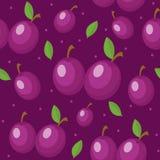 Sömlös modell för plommoner Ändlös bakgrund för plommon, textur Bär frukt bakgrunden också vektor för coreldrawillustration Arkivbild