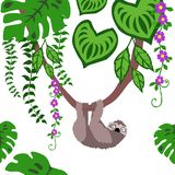 Sömlös modell för sengångare, tropisk djungelrepetitionmodell för textildesign, tygtryck, mode eller bakgrund vektor illustrationer