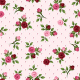 Sömlös modell för tappning med röda och rosa rosor. Vektorillustration. Royaltyfria Foton